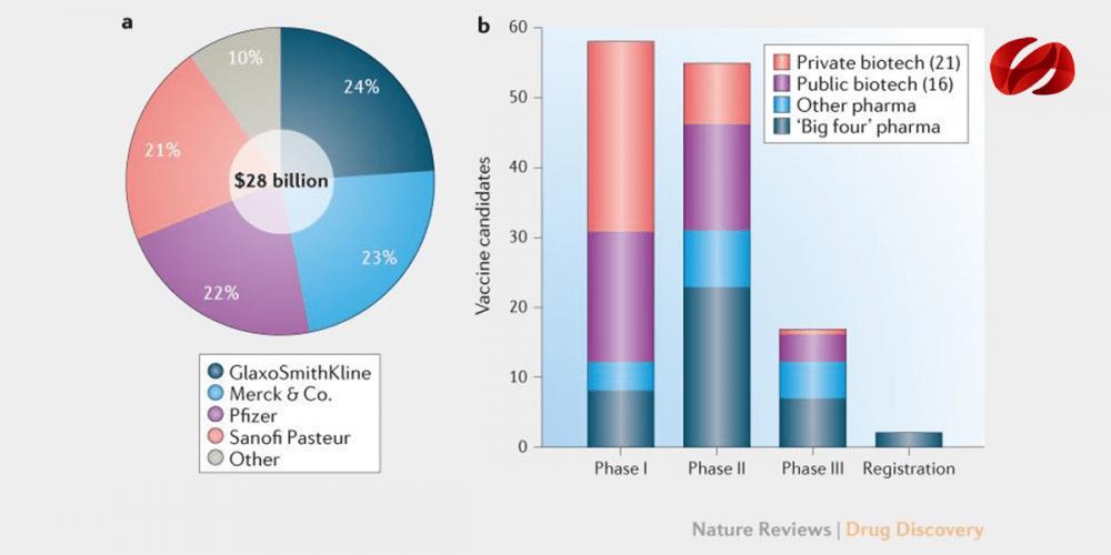 Impacto de las vacunas en la salud pública